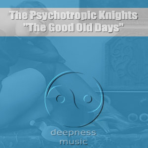 The Psychotropic Knights 歌手頭像