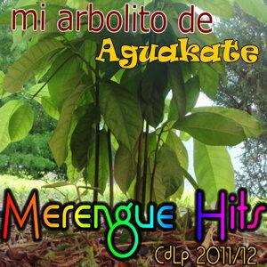 Mi Arbolito de Aguakate 歌手頭像