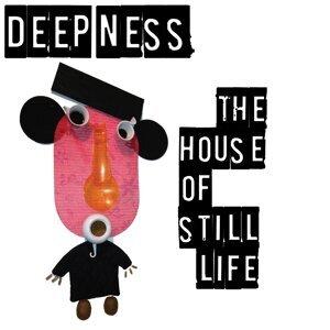 Deep Ness 歌手頭像
