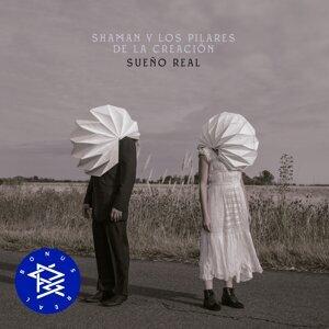Shaman y los Pilares de la Creación