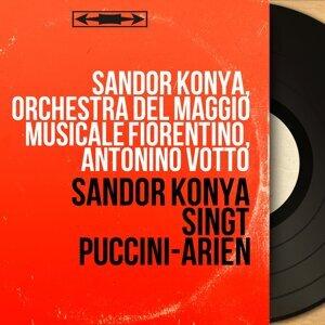 Sándor Kónya, Orchestra del Maggio Musicale Fiorentino, Antonino Votto 歌手頭像