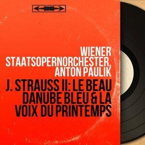 Wiener Staatsopernorchester, Anton Paulik 歌手頭像