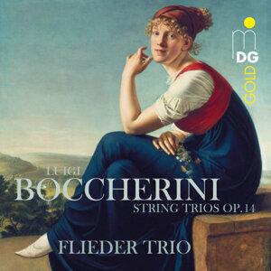 Flieder-Trio 歌手頭像