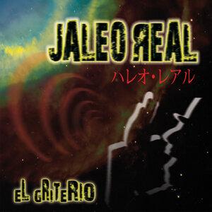 Jaleo Real 歌手頭像