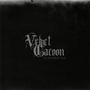 Velvet Cacoon
