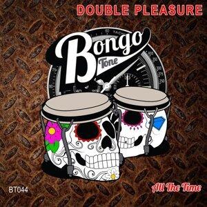 Double Pleasure 歌手頭像