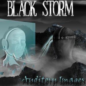 Black Storm 歌手頭像