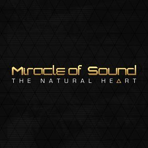 Miracle of Sound 歌手頭像