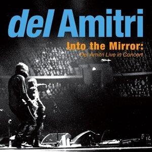 Del Amitri (戴勒米崔合唱團)