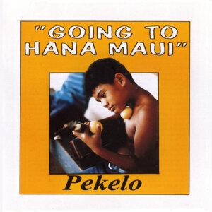 Pekelo 歌手頭像
