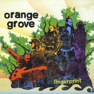 Orange Grove 歌手頭像