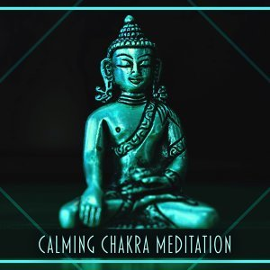 White Noise Meditation 歌手頭像