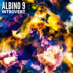 Albino 9 歌手頭像