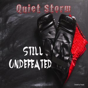 Quiet Storm 歌手頭像