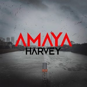 amAya 歌手頭像