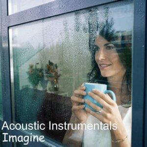 Acoustic Instrumentals 歌手頭像