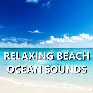 Ocean Sounds 歌手頭像