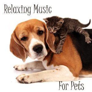 Relaxing Music For Pets 歌手頭像