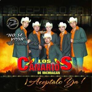 Los Canarios Del Michoacan 歌手頭像