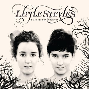 The Little Stevies 歌手頭像