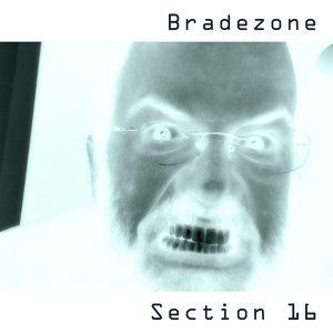 Bradezone 歌手頭像