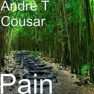 Andre T Cousar 歌手頭像