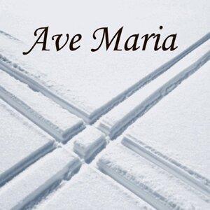 Ave Maria Consort 歌手頭像