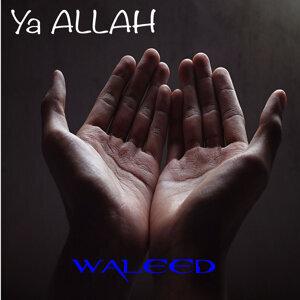 Waleed 歌手頭像