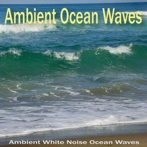 Ambient White Noise Ocean Waves 歌手頭像