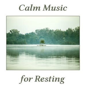 Relaxing Piano Music Consort 歌手頭像