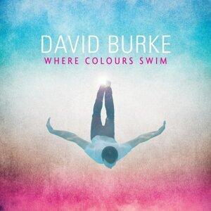 David Burke 歌手頭像