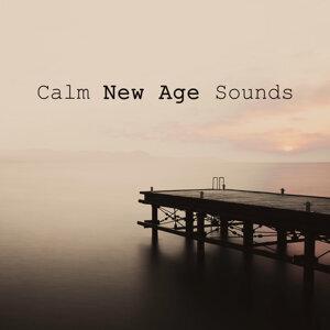 New Age 歌手頭像