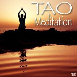 Tao Meditation 歌手頭像