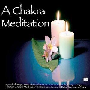 A Chakra Meditation 歌手頭像