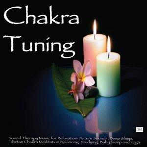 Chakra Tuning 歌手頭像