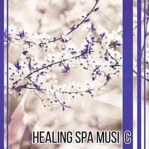 Asian Zen: Spa Music Meditation 歌手頭像