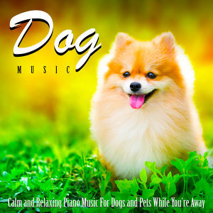 Dog Music 歌手頭像