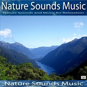 Nature Sounds Music 歌手頭像