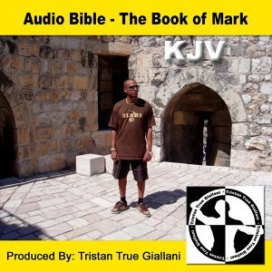 Audio Bible The Book of Mark 歌手頭像