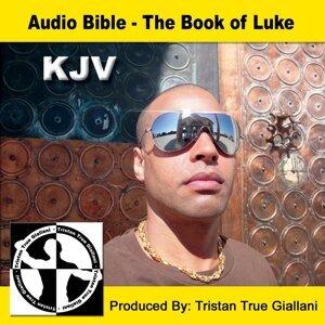 Audio Bible The Book of Luke 歌手頭像