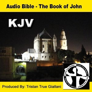 Audio Bible The Book of John 歌手頭像