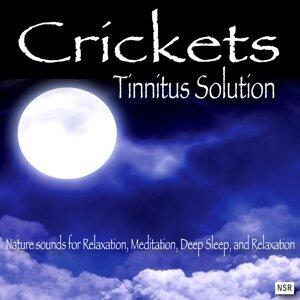 Crickets - Tinnitus Sleep Solution 歌手頭像