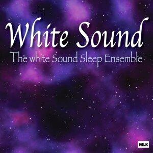 The White Sound Sleep Ensemble 歌手頭像
