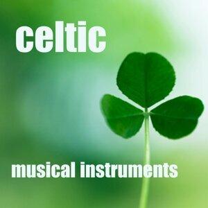 Instrumental Celtic 歌手頭像