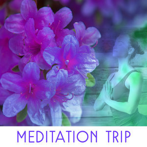 Lullabies for Deep Meditation 歌手頭像