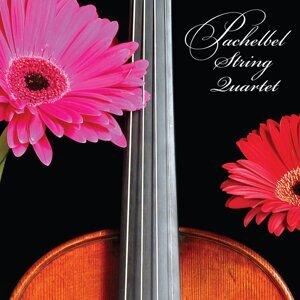 Pachelbel String Quartet 歌手頭像