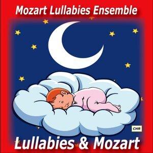 Mozart Lullabies Ensemble 歌手頭像