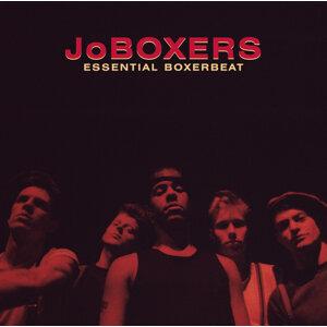 Jo Boxers 歌手頭像