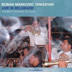Boban Markovic Orkestar 歌手頭像