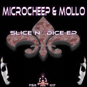 MicroCheep, Mollo 歌手頭像
